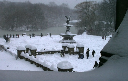 Central Park, Murray Head photographer