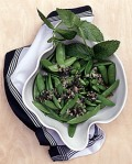 Martha Stewart living, fresh mint leaves,