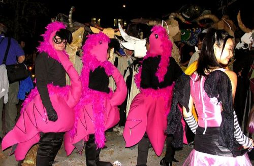 pink flamingos, greenwich village halloween parade, Murray Head