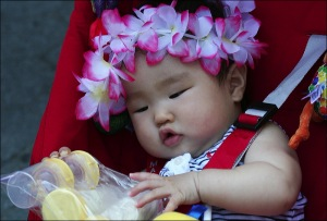orchids, chinese baby