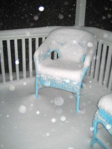 back porch snow storm, La Vie en Rose, December26th Ocean Grove