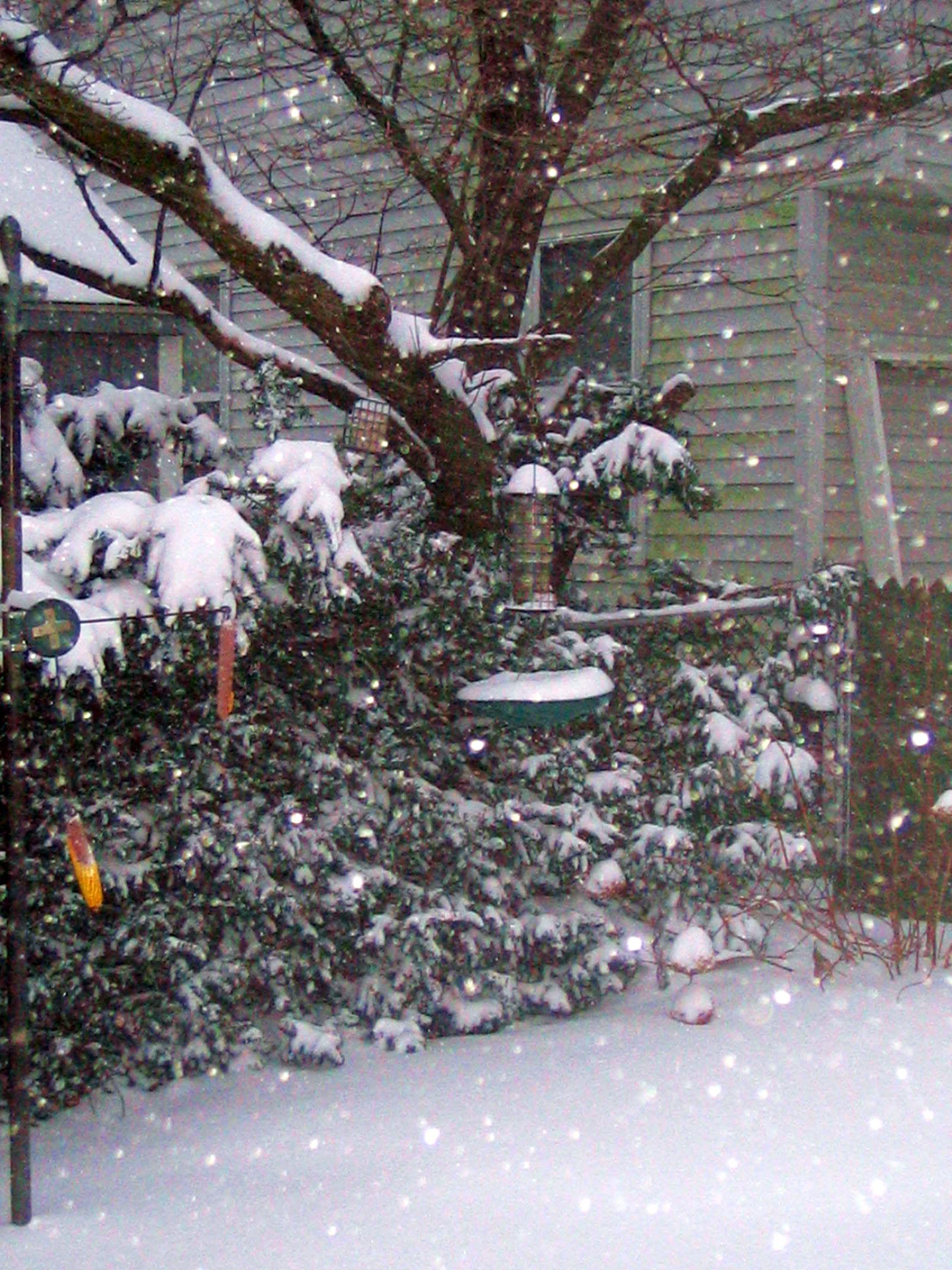 national weather service pbenjay u0027s blog