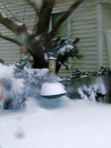 bird feeder, snow drifts,December 27th