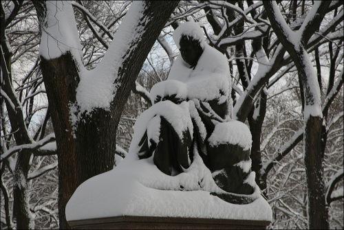 Central Park, new york city, sculpture, snow mantle