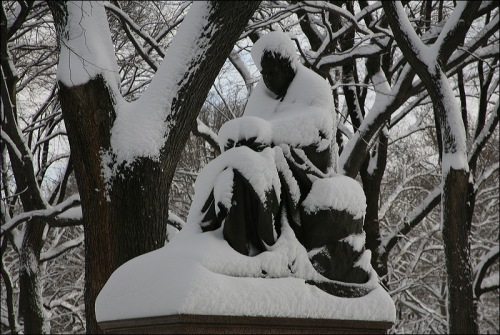 Central Park, new york city, sculpture, snow mantle
