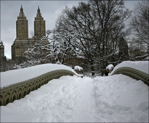 Central Park, San Remo, bow bridge, new york city, snow storm Jan 27th