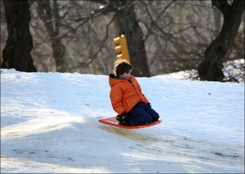 Central park, snow saucer, sliding in Central Park, New York City