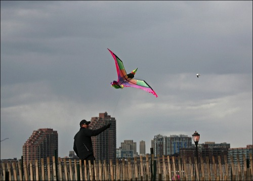 Kite flying, lower Manhattan