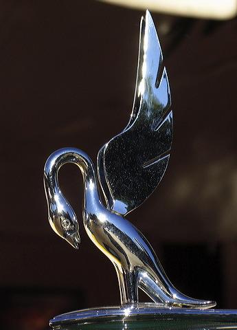 hood mascot, hood ornament, swan, pelican