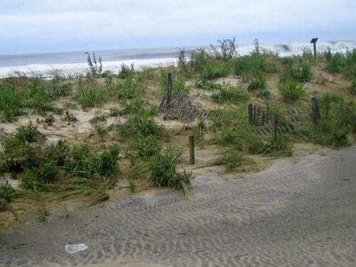 hurricane Irene, sand dunes Ocean Grove, Ocean Grove, NJ