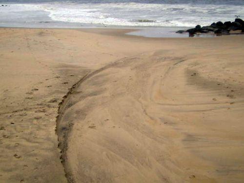beach erosion, Ocean Grove, Hurricane Irene