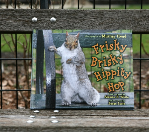 Madison Square park, squirrels, Frisky Brisky Hippity HOp