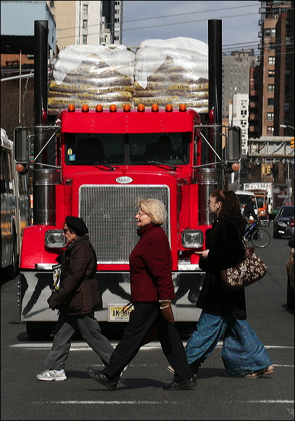 Red tractor trailer truck,