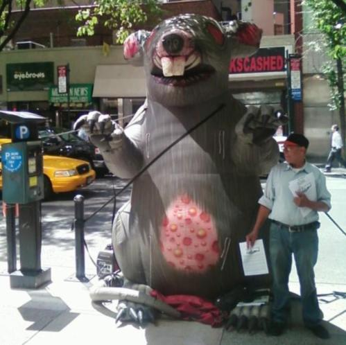 union rat, Greg Moore, New York city, contractors