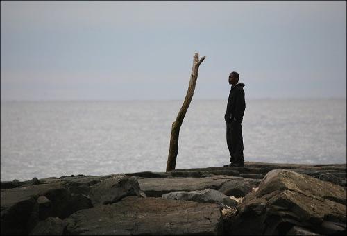 driftwood, solitary man