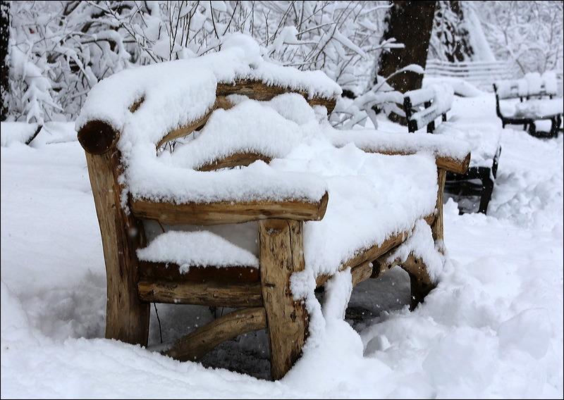 Central Park Snow - City Still Life (3/6)