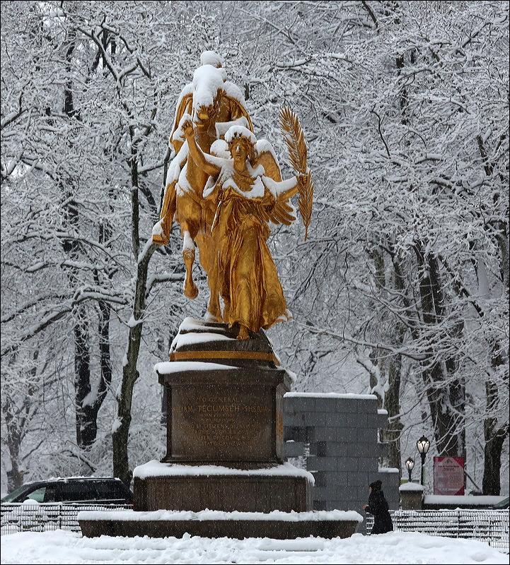 Central Park Snow - City Still Life (6/6)